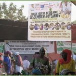 6th edition of the West African Peasant Seed Fair.